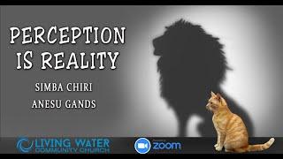 Perception is Reality - Simba Chiri & Anesu Gands