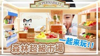 跟恩恩一起扮家家酒囉  ♬  森林家族 Sylvanian Families 貓媽媽的 超級市場 豪華組   シルバニアファミリー 森のスー    Funbox Toy  
