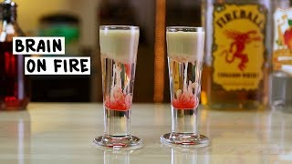 Brain on Fire Shot - Tipsy Bartender