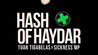 Gambar cover Lirik Tuan Tigabelas X Sickness MP Hash Of Haydar