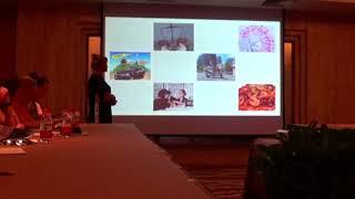 Презентация острова Хайнань от Эдем Тревел