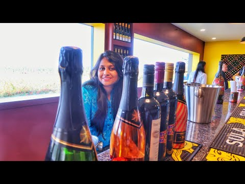 🍷🥂 Sula Vineyards NASHIK Ll Wine Making And Tasting Tour Ll How Wines🍷 Are Made...???