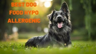 Best Dog Food Skin Allergies | Best Dog Food for Dry Itchy Skin