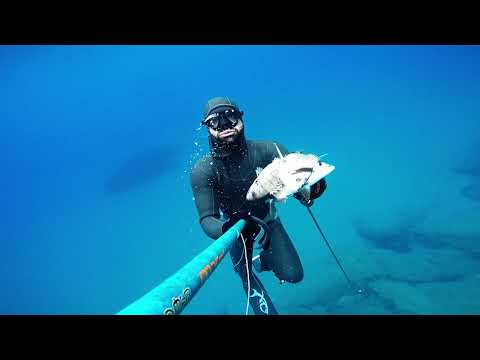 Spearfishing in Cyprus_ i Belong To The Sea_