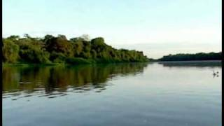 Pantanal, Mato Grosso, Brazil – Travel Information
