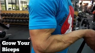 WHY YOUR BICEPS AREN