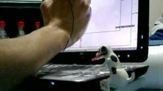 腰振ることだけで脳がないUSB Humping DogにMicro SDカードリーダライタ...