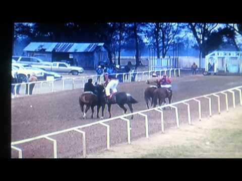 Carreras de caballos mabank tx