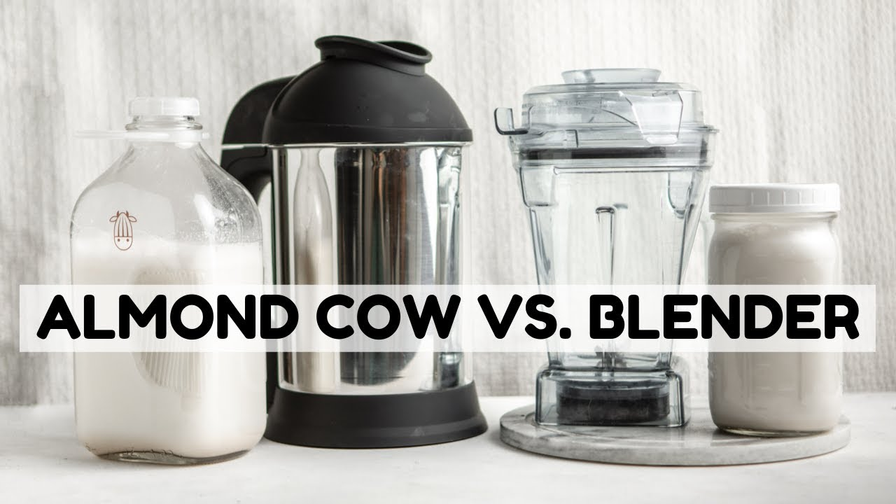 What Makes the BEST Nut Milk? | Almond Cow Review