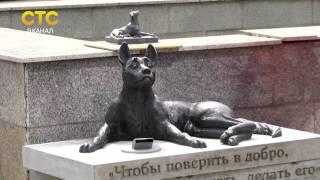 Открытие памятника бездомным животным