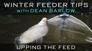 Winter Feeder Tips With Dean Barlow - Upping The Feed