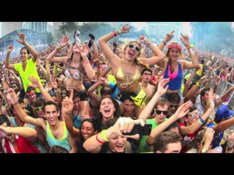 Calvin Harris vs Martin Garris - Bounce the animals (remix)