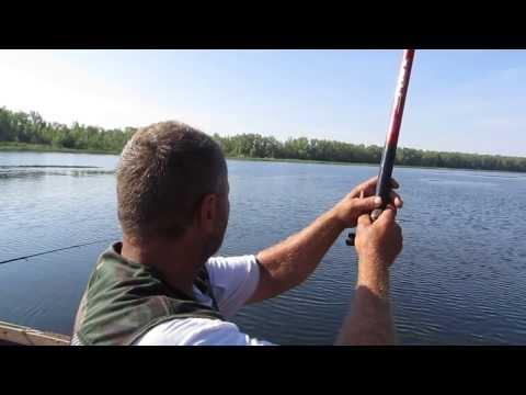 рыбалка в с.золотом саратовская область