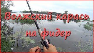 Ловля карася в июле на Волге(Рыбалка на карася в летом в реке. Ловлю на фидер и на донку. На видео мелководный участок Волги, на котором..., 2015-07-17T09:34:39.000Z)