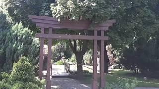 Парк вечно зелёных растений, и просто очень красивое место