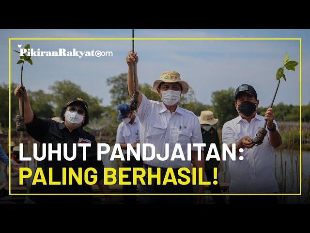 Klaim Indonesia Dipuji Dunia karena Sukses Atasi Penebangan Hutan, Luhut Binsar: Paling Berhasil!