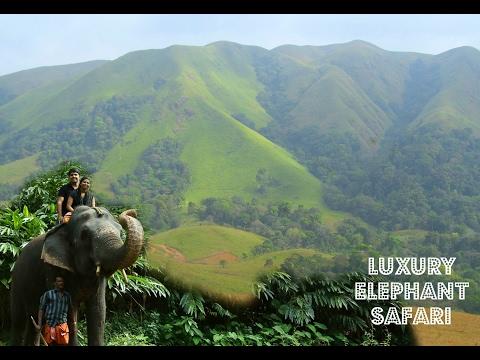 Elephant safari & jeep safari in Kerala | Periyar | Best safari packages | Travel Vlog #10