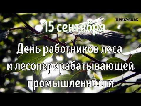 День работников леса, 2019 г