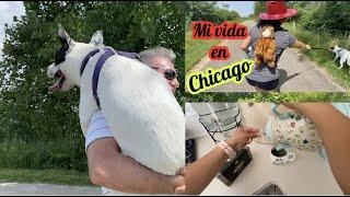 CASI SE AHOGA MI PERRITA Y ENTREGANDO PRODUCTO EN CHICAGO. Vlog# 473
