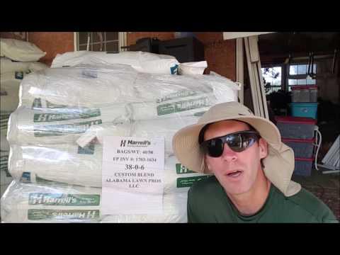 Lawn Fertilizer Application - How Much?  Which Kind?  When?