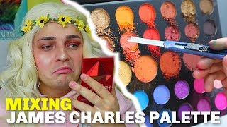 Mixing ALL Of The James Charles Palette TOGETHER!