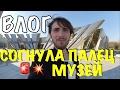 VLOG:  ДРАКА ЗА... МУЗЕЙ ВОВ  / Лабецкий Егор