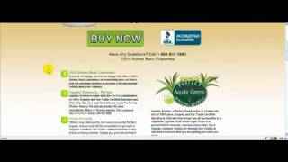 Chlorella Supplements For Rapid Weight Loss & Improved Health
