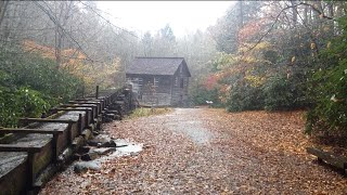TheDailyWoo - 858 (11/6/14) The Mingus Corn Mill