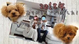 2018年の締めくくり動画です   年賀状の写真を撮ると、1年が終わったな...