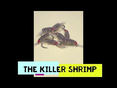 Tying The Grafham Killer Shrimp