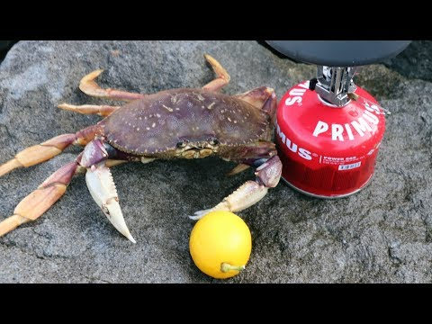 The ONLY Way To Eat Delicious Dungeness Crab