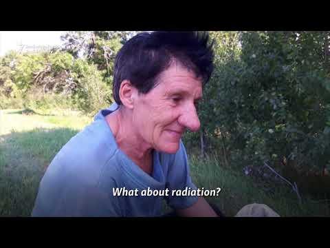 Radioactive Mushrooms In Belarus?