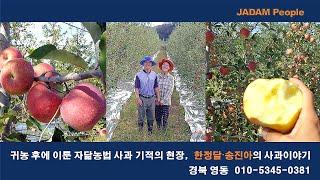 귀농 후에 이룬 자닮농법 사과의 기적 (010-5345…