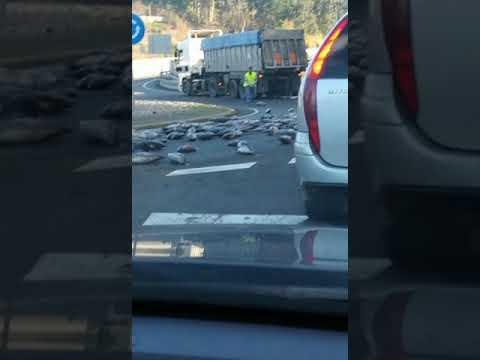 Insólita estampa en Vilagarcía: un camión pierde carga y siembra la carretera de atunes