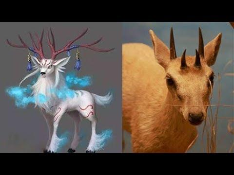 山海经中这四个奇怪的动物,在非洲找到了