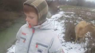 Ооочень длинное видео//хозяйство и планы//козы убежали//