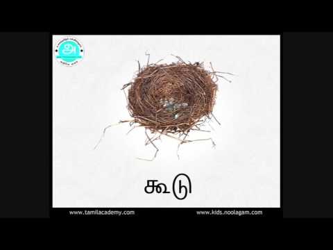 "Ka Varisai Sorkal | ""க"" வரிசை சொற்கள் (பகுதி - 2) |  Ka Series Words (Part - 2)"