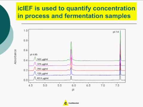 10 Minute Charge Heterogeneity Analysis for Development and Quality Control of Biopharmaceuticals