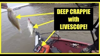 How to catch deep #Crappie on wood using #LIVESCOPE.