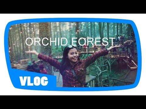 orchid-forest-cikole-||-lembang-||-tempat-yang-wajib-kalian-kunjungi-bersama-pasangan
