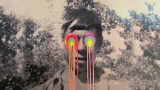 The Flaming Lips - Mother I've Taken LSD [Official Audio]