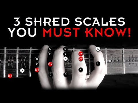 3 Best Shred Scales - Use These To Sound AMAZING!