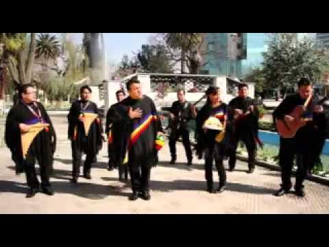 MÚSICA BOLIVIANA - LAGRIMAS DE DOLOR - GRUPO SEMILLA