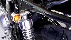 Triumph Thruxton 900 Blinker