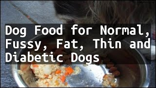 Recipe Dog Food for Normal, Fussy, Fat, Thin and Diabetic Dogs