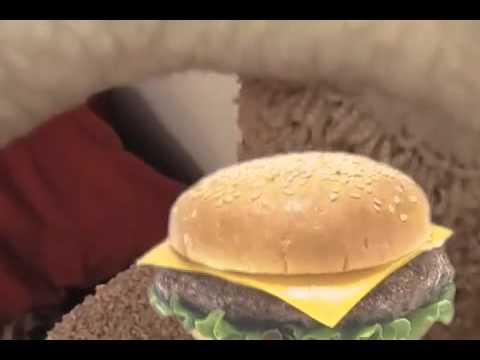 Funny cats can haz cheezburger