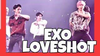 Download EXO Exploration#5 Exo #Loveshot  LIVE IN MANILA 엑소 사랑 샷  살고 있다