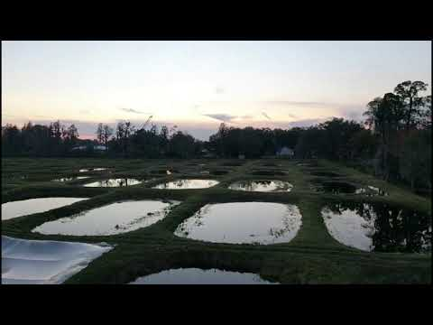 Imperial Tropicals / Fish Hatchery In Lakeland Florida