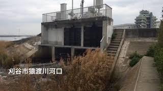 刈谷市シーバススポット猿渡川河口