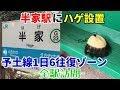 【廃線危機】予土線を全駅訪問#3